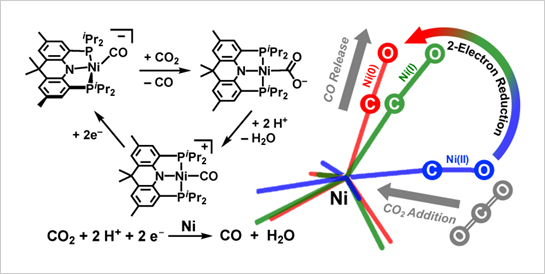 """Direct CO2 Addition to a Ni(0)-CO Species Allows the Selective Generation of a Nickel(II) Carboxylate with Expulsion of CO"" Sahoo, D., Yoo, C. and Lee, Y. J. Am. Chem. Soc. 2018, 140, 2179-2185.  DOI: 10.1021/jacs.7b11074.  ""Selective Transformation of CO2 to CO at a Single Nickel Center"" Yoo, C., Kim, Y.-E. and Lee, Y.,* Acc. Chem. Res. 2018, ASAP. DOI: 10.1021/acs.accounts.7b00634"