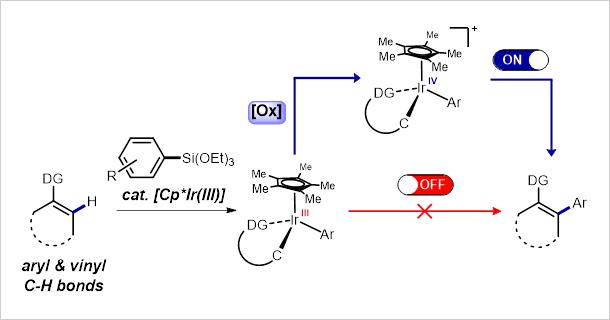 Figure for Ir-Catalyzed C-H Arylation